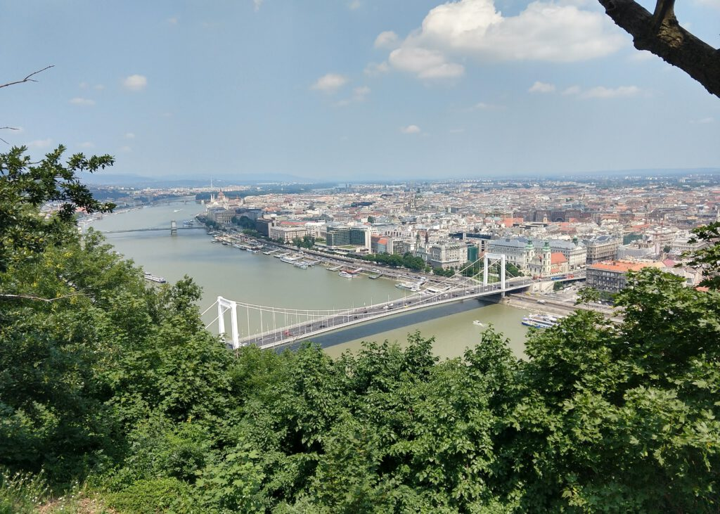 The River Danube: greenery in the foreground, a river crossed by a suspension bridge, urban development on the far bank.